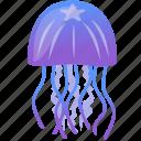 blue, purple, wild, jellyfish