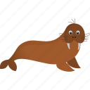 brown, walrus, wild icon