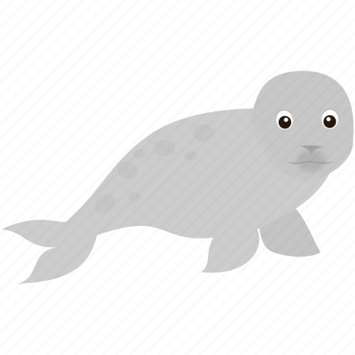 baby, gry, seal, white, wild icon