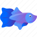 blue, domestic, fish, purple, wild icon