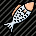 fish, seafood, animal