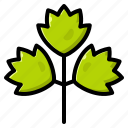 celery, ingredient, vegetable, vegetarian, organic icon