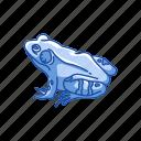 amphibian, animal, bullfrog, carnivorous, frog, toad, vertebrates