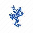 amphibian, animal, frog, poison dart frog, poison frog, toad icon