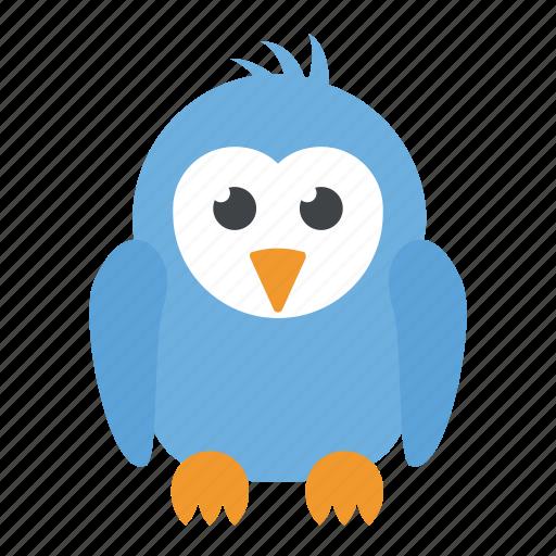 animal, bird, cartoon character, dove, sparrow icon