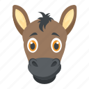 animal, bronco, colt, horse, mare
