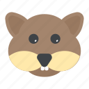 animal, forest, rodent, sciurus, squirrel icon