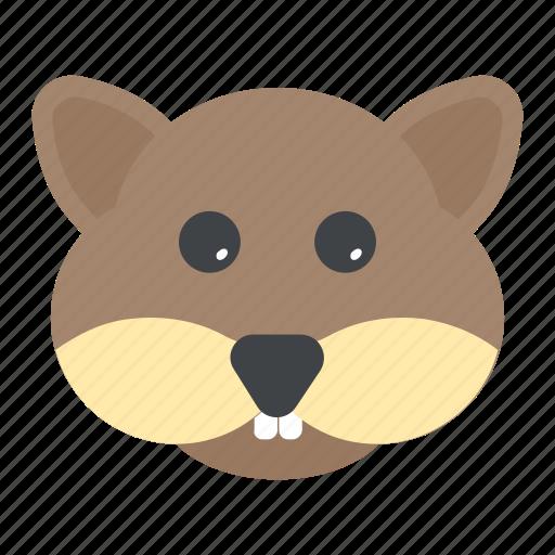 animal, forest, rodent, sciurus, squirrel icon