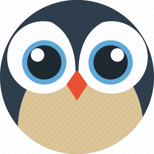 animal, avatar, cartoon, face, owl, pet, the zoo icon