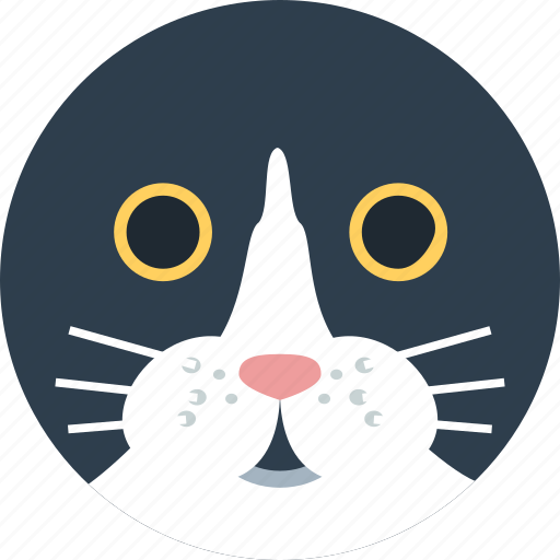 animal, avatar, cartoon, cat, face, pet icon
