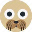 animal, avatar, cartoon, face, sea, water seal icon