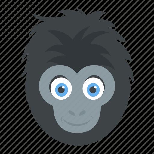 ape head, chimpanzee, gorilla, monkey face, wild animal icon