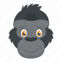 ape head, chimpanzee, gorilla, monkey face, wild animal icon