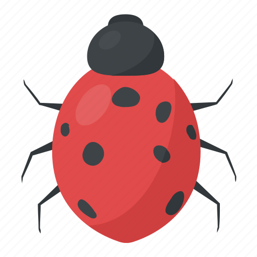 animal, bugs, insects, lady bird icon
