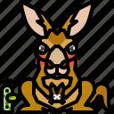 kangaroo, australia, wildlife, mammal, wild, animal
