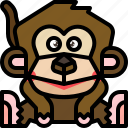 animal, ape, chimpanzee, monkey, wildlife