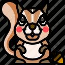 animal, mammal, nut, squirrel, wild