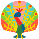 animal, bird, colorful, feather, peacock