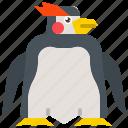 animal, bird, penguin, white, wildlife