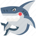 animal, fish, ocean, predator, sea, shark, wildlife icon