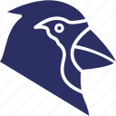 fowl, hen, poultry, rooster icon