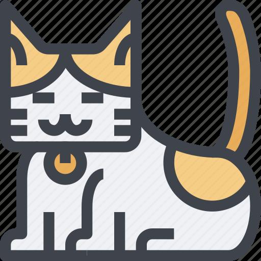 animal, avatar, cat, character, wild icon