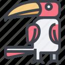 animal, avatar, character, hornbill, wild icon