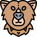 bear, grizzly, intimidate, wildlife, danger