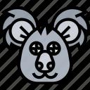 koala, cute, australia, marsupial, animal