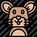 rat, mouse, mice, rodent, pest