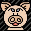 pig, swine, domestic, livestock, farm