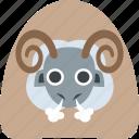 farm, farming, ram, sheep icon