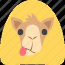 camel, desert, egypt, wild icon
