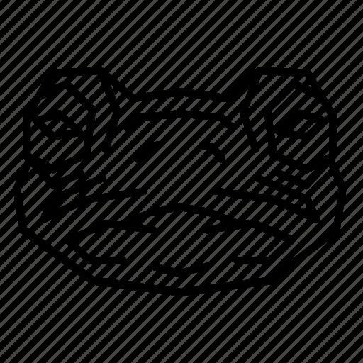 amphibian, animal, aquatic, face, frog, head, toad icon