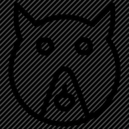 animal, bear, mammal, zoo icon