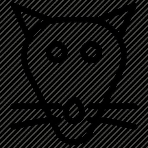 animal, mouse, pet, rat icon