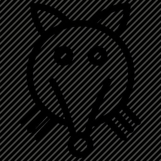 animal, mickey, pet, rat icon