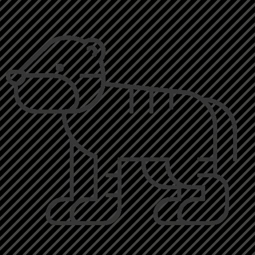 animal, mammal, tiger, wildlife, zoo icon