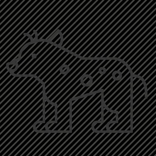 animal, hyena, mammal, wildlife, zoo icon
