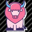 bison, buffalo, bull