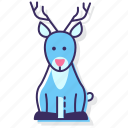 reindeer, animal, antlers, christmas