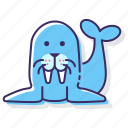 animal, sea, walrus icon