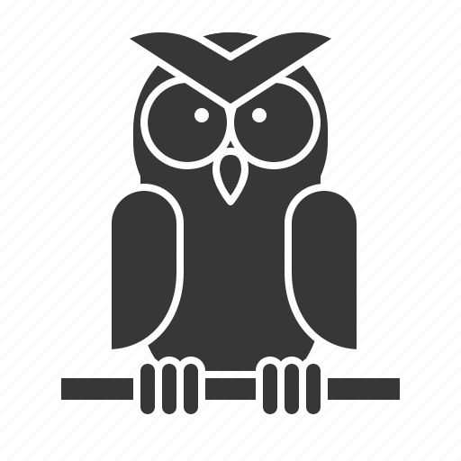 Animal, bird, owl, wildlife, zoo icon - Download on Iconfinder