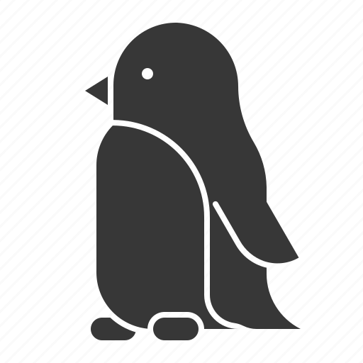 Animal, bird, penguin, wildlife, zoo icon - Download on Iconfinder