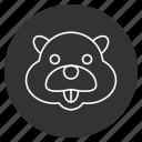 animal snout, beaver, mammal, profile, rodent, wild, wildlife