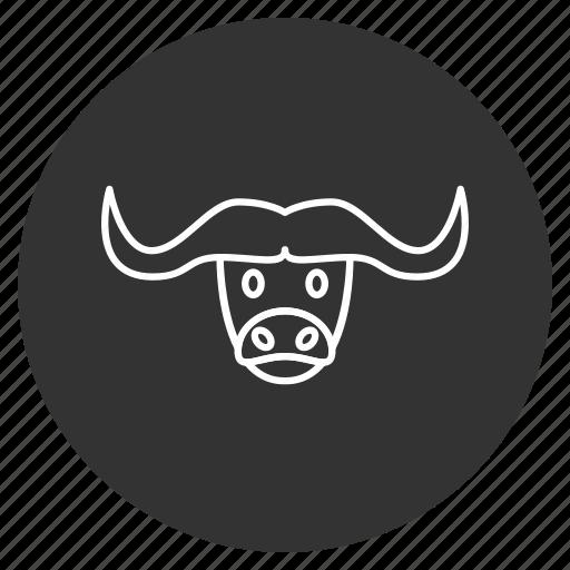 animal, buffalo, bull, cow head, horns, wild, wildlife icon