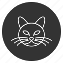 cat, head, kitten, kitty, pet, pussycat, tomcat icon