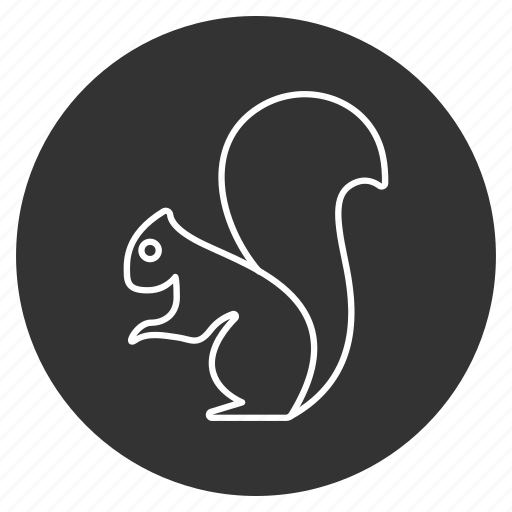 animal, chipmunk, ground squirrel, hackee, mammal, rodent, wildlife icon