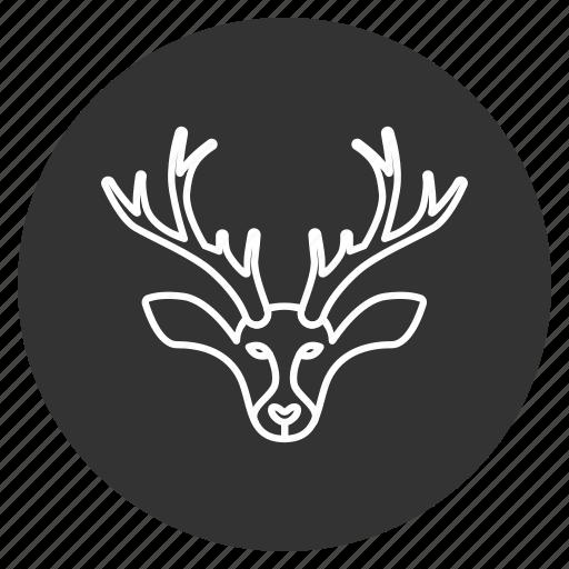christmas, deer, horns, reindeer, wild animal, winter, xmas icon