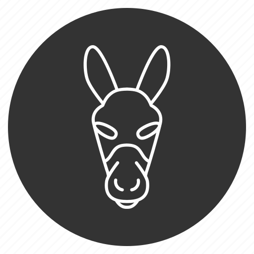 animal, ass, donkey, face, goat, head, stupid icon